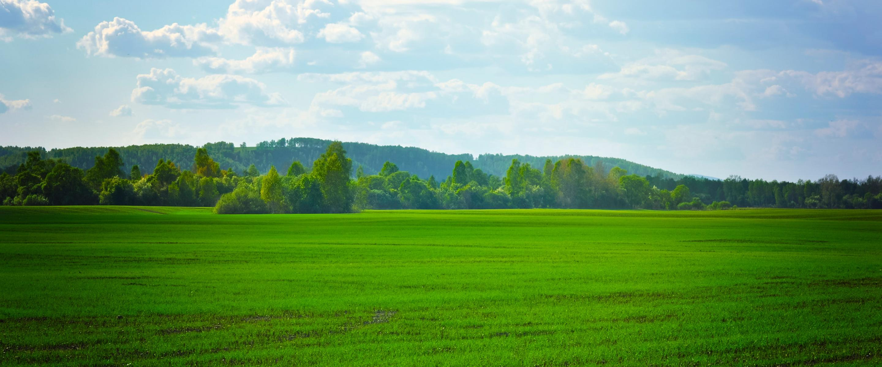 Green Field Desktop